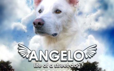 """Angelo – Life of a Street Dog"" finalmente disponibile on demand"