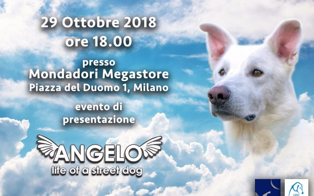 """Save the date: presentazione """"Angelo – Life of a Street Dog"""""""